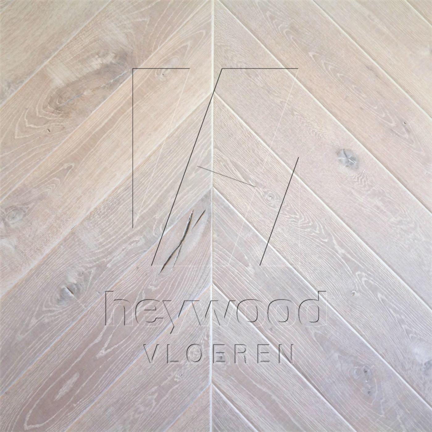Knotting Hill Chevron 'Svalbard' in Chevron of Pattern & Panel Floors