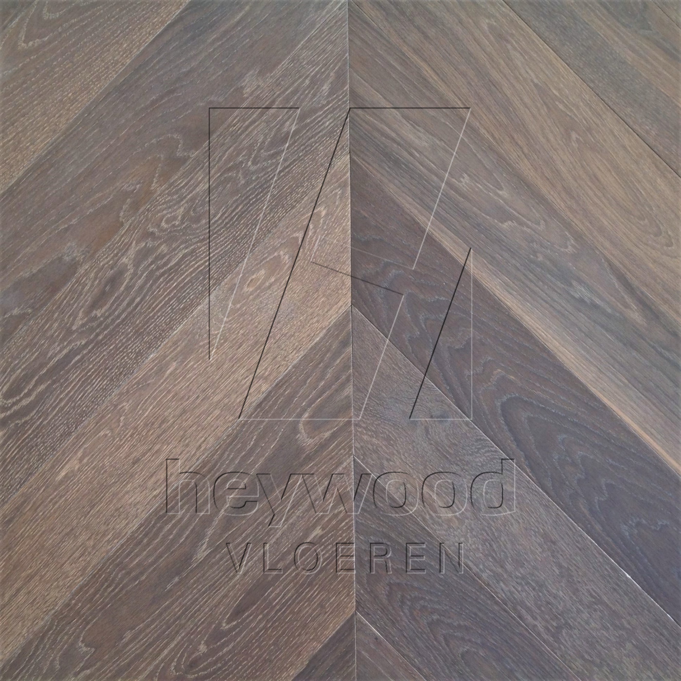 Chevron Berkeley in Chevron of Pattern & Panel Floors